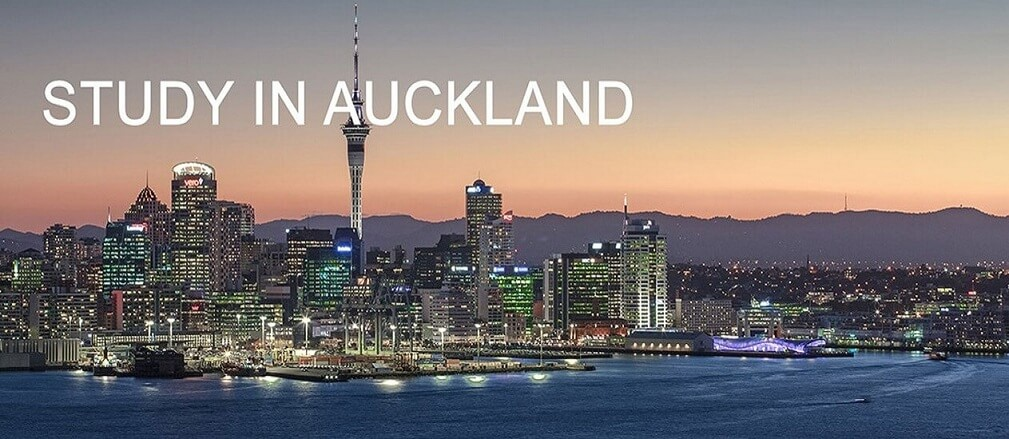 overseas education consultant - study in new zealand